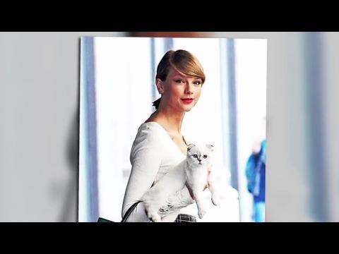 Taylor Swift dit qu'elle ne cherche plus son Prince Charmant