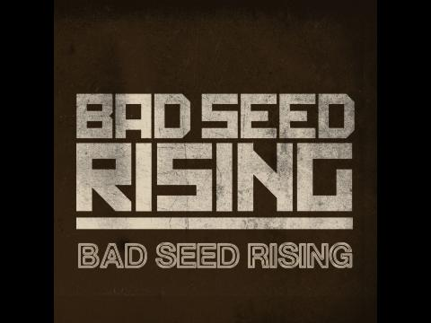 Bad Seed Rising - Fighting Gravity