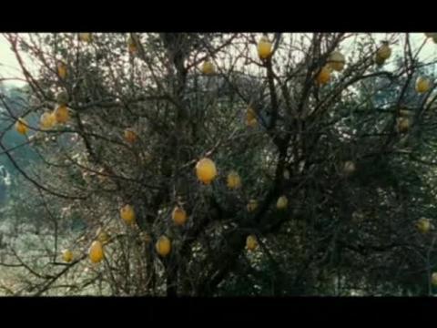 Les Citronniers - Bande-annonce VOSTFR