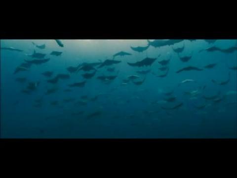 Océans - Bande-annonce VF