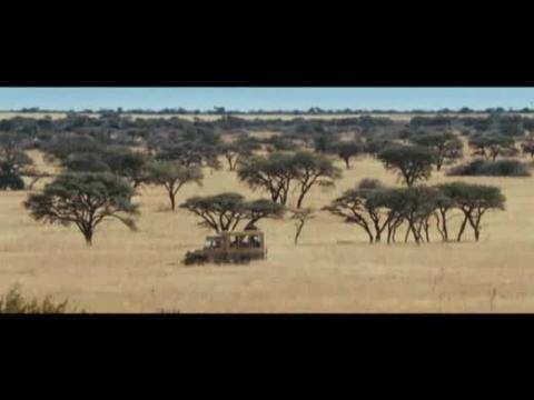 Safari - Bande-annonce VF