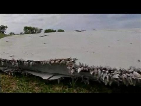 MH370: des coquillages à la rescousse des experts