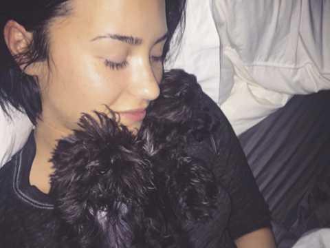 Exclu vidéo : Demi Lovato : Moment câlin avec son chien !