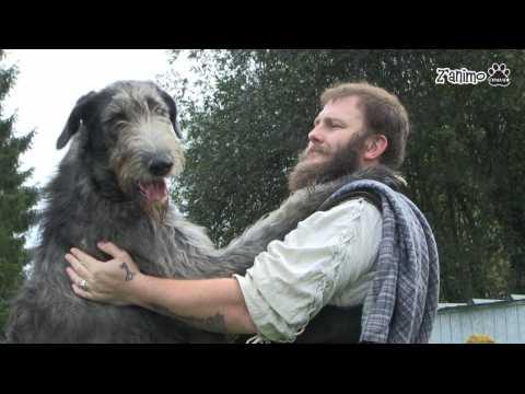 Voici le plus grand chien du monde !!!