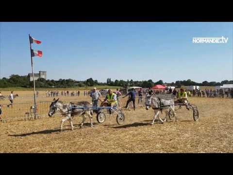 35e édition des courses d'ânes de Gisay-la-Coudre
