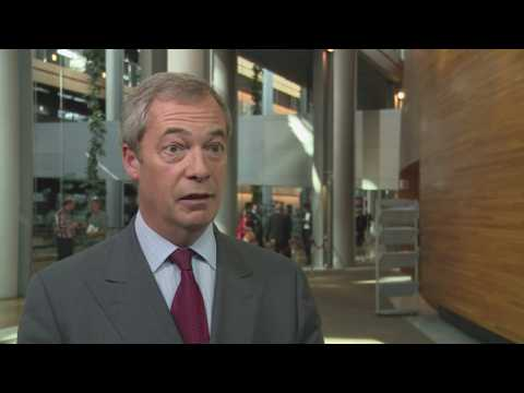 Farage: Diane James stepping down isn't end of the world