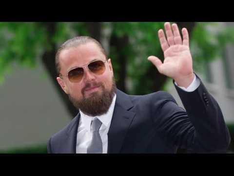 Leonard DiCaprio ne se fait pas violer dans The Revenant