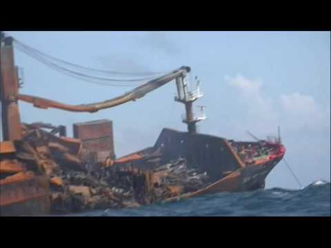 Social activist calls for independent inquiry over Sri Lanka ship fire