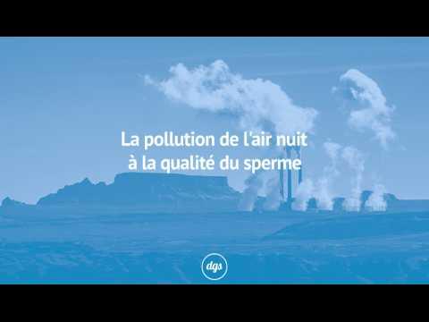 La pollution de l'air nuit à la qualité du sperme