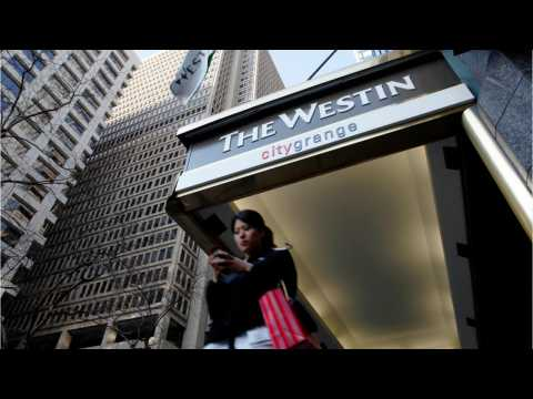 Westin's New Eco-Friendly Element Hotels For Travelers