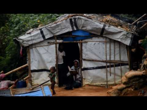 'Kill us here instead': Rohingya refugees fear repatriation