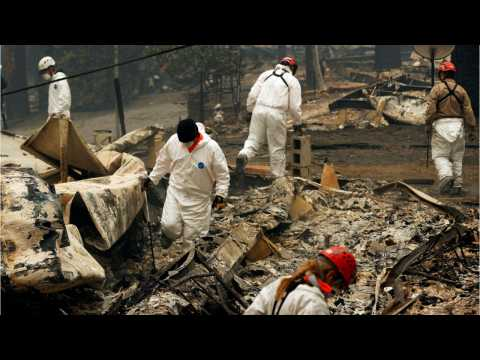 Number Of Missing In California's Deadly Camp Fire Drops To 249