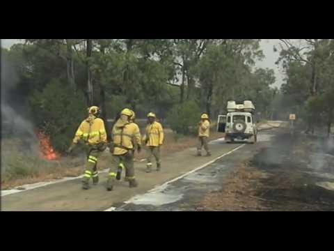 Espagne : Un gigantesque incendie dans le parc naturel de Donana, 1800 personnes évacuées (Vidéo)