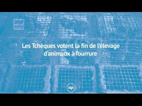 Quand la France continue les massacres, les Tchèques votent la fin de l'élevage d'animaux à fourrure