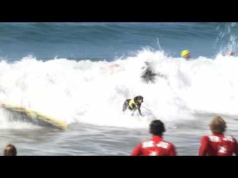 Etats-Unis: compétition de surf canin en Californie