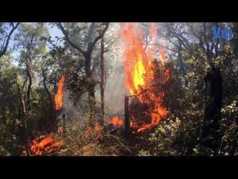 Le golfe de Saint-Tropez en lutte contre les incendies