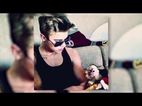 Justin Bieber reçoit une amende salée pour son singe