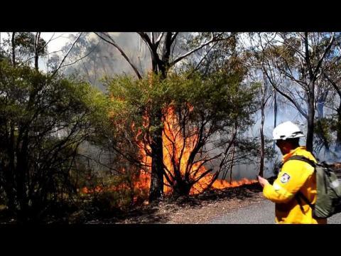 """Australie: le combat des pompiers contre """"un méga-incendie"""""""