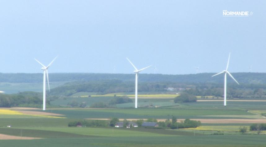 Européennes : les Verts dans le vent