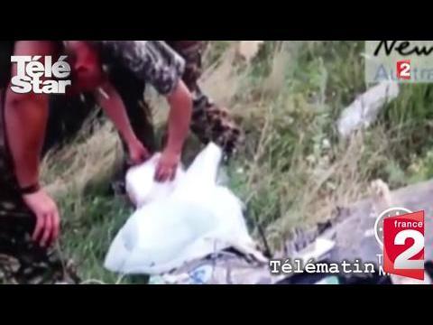 Télématin : une vidéo de pillage des décombres du vol MH17 fait scandale