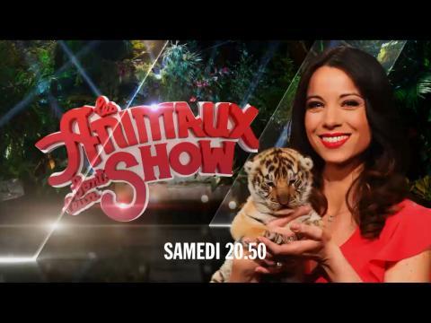 Les animaux font leur show b tisier du tournage samedi 20h50 sur - Les animaux font leur show ...