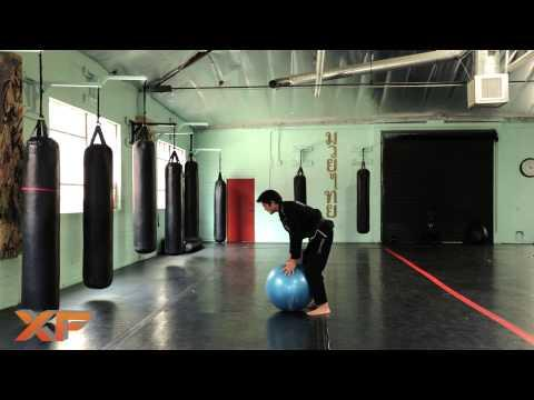 XF Jiu Jitsu and MMA Basics: Stability Ball Mount Exercise