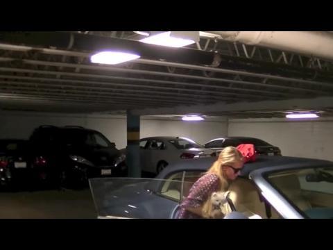 Paris Hilton sort avec son accessoire préféré : Prince, le loulou de Poméranie