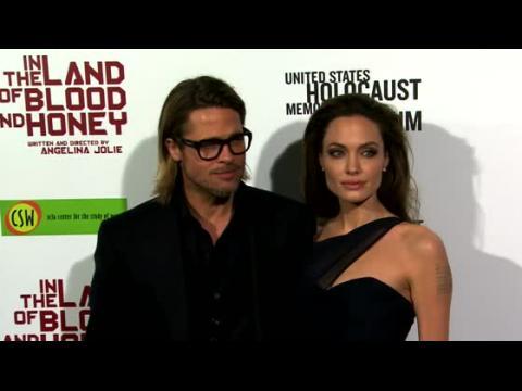 Le vin de Brad Pitt et Angelina Jolie nommé le meilleur rosé du monde