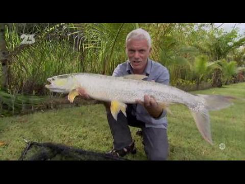 River Monsters - S4E04 - VF -  Replay