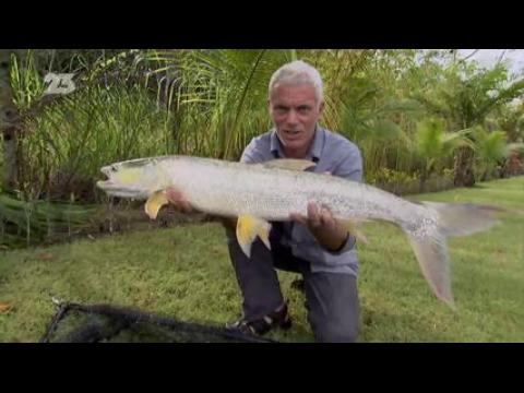 Replay - River Monsters - 4x04- VF
