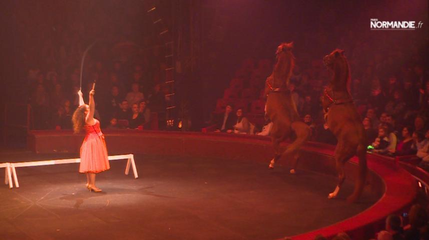 La féerie du cirque