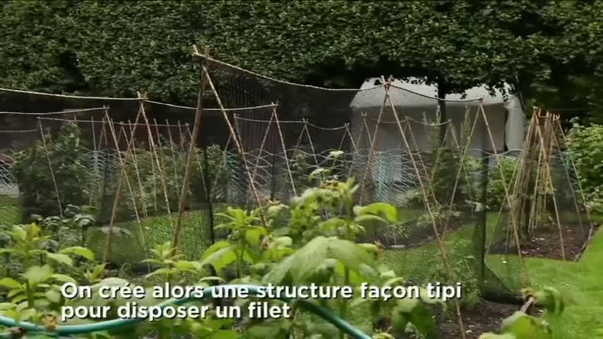 Jardins, Jardin : le bambou se fait utile - Video sur Deco.fr
