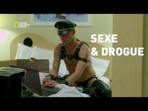 sexe animaux scène de sexe
