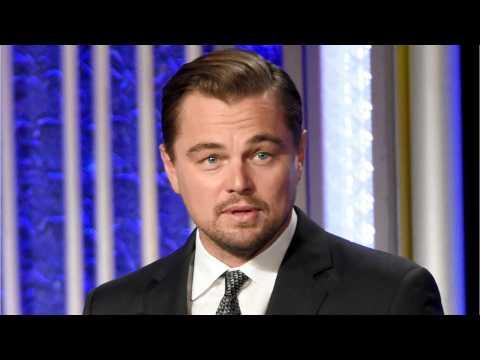 Leonardo DiCaprio Launching $150 Million Climate Fund