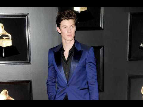 Shawn Mendes reflects on bullying over music dream