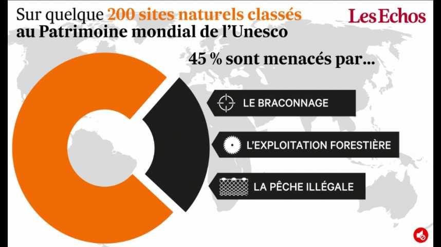 Illustration pour la vidéo Les sites classés à l'Unesco menacés par le braconnage