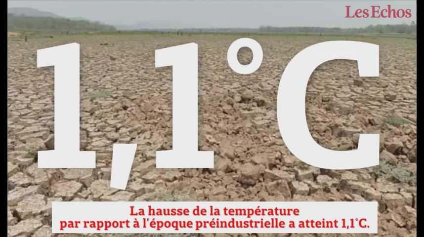 Illustration pour la vidéo Climat : 2016, année de tous les (tristes) records