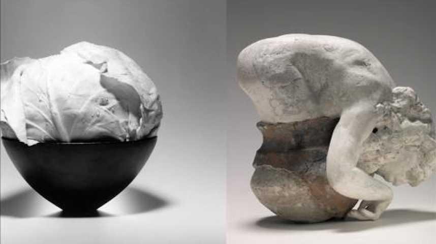Illustration pour la vidéo Avant-Première : Rodin - Mapplethorpe au musée Rodin