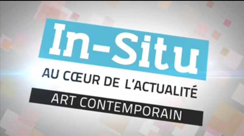 Illustration pour la vidéo In Situ - L'Ange de l'Histoire au Palais des Beaux-Arts de Paris