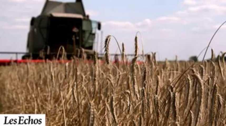 Illustration pour la vidéo Nourrir la planète, défi économique et scientifique pour l'agriculture de demain