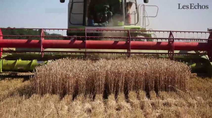 Illustration pour la vidéo Agriculture : Valls présente un nouveau plan de soutien après les mauvaises récoltes