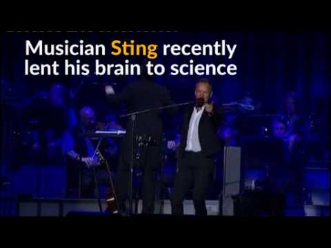 Sting's musical mind revealed by brain scan