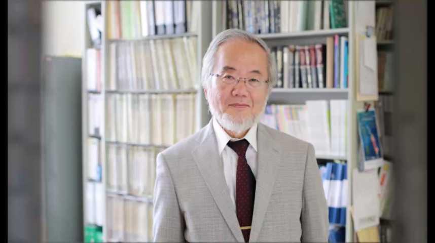 Illustration pour la vidéo Qui est Yoshinori Ohsumi, le prix Nobel de médecine ?