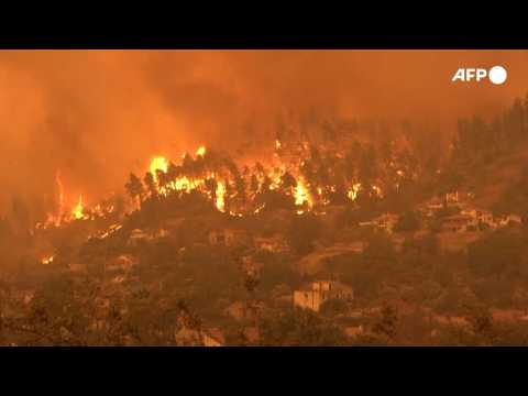 Wildfires: why are there so many this year?