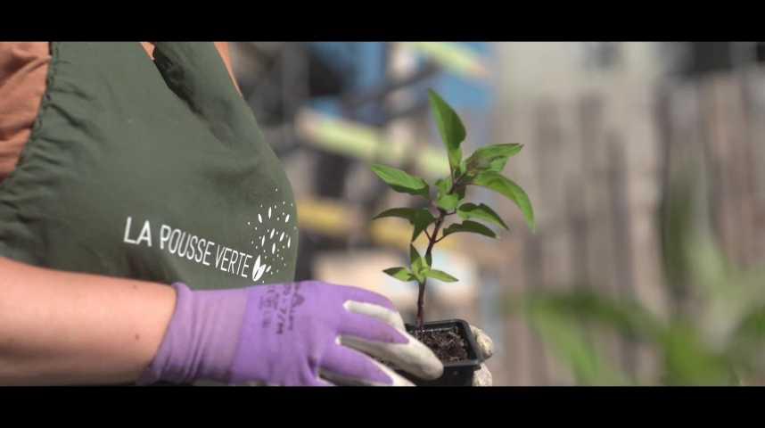 Illustration pour la vidéo La Pousse Verte vend des plantes locales et bio en coffrets cadeaux