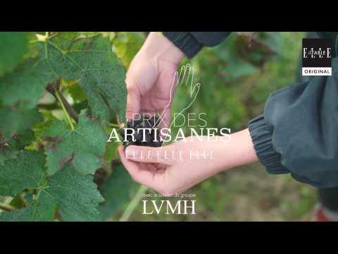 VIDEO : Élise Bougy, une vigneronne de Champagne engagée à suivre