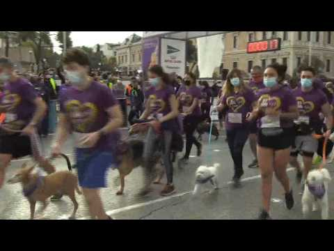 Dog race 'Perrotón' returns to the streets of Madrid