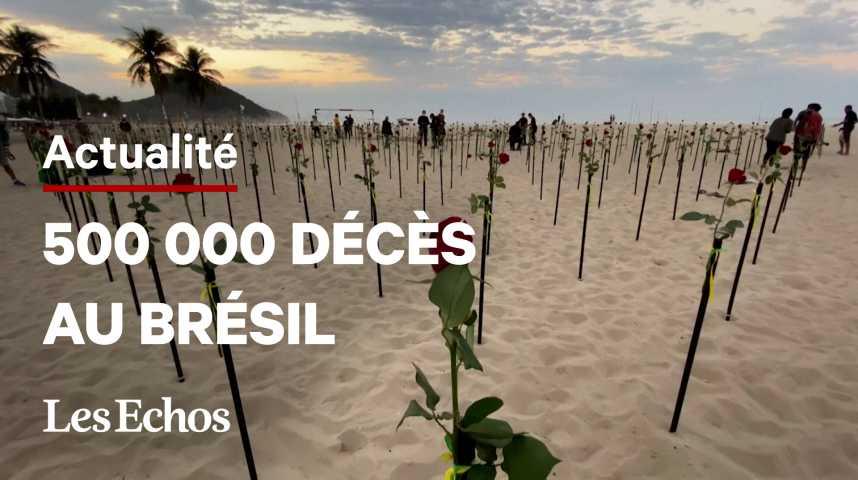 Illustration pour la vidéo Covid-19 : au Brésil, des roses pour les 500 000 morts