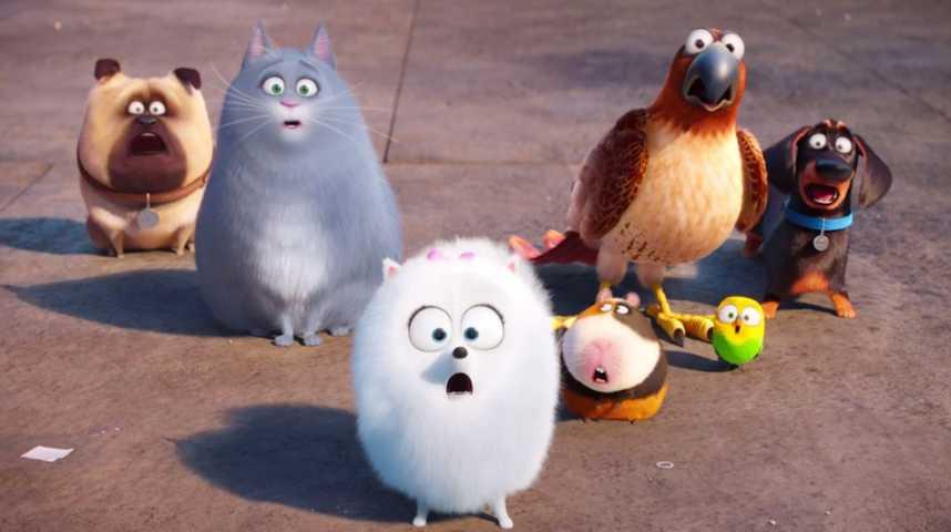Comme des bêtes - bande annonce 3 - VF - (2016)