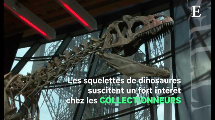 Illustration pour la vidéo Pour 2 millions d'euros, un collectionneur s'est offert... un dinosaure